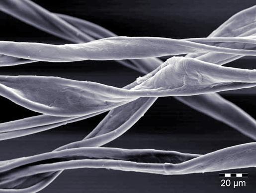 Fibre di cotone